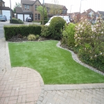 Artificial Grass Surface in Alder Forest 1