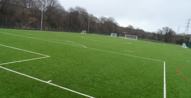 Reinforced Natural Grass in Stewarton